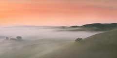 Hills are turning green (kenxu78) Tags: hills rollinghills escaype bayarea fog lowfog green sunrise california