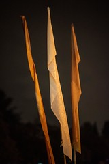 20181028_0001_1 (Bruce McPherson) Tags: brucemcphersonphotography allsoulsinmountainview remembering halloween shrines candles rain heavyrain night nightphotography lowlightphotography rememberingthosewhohavegonebeforeus cemetery colourful candlelight mountainviewcemetery vancouver bc canada