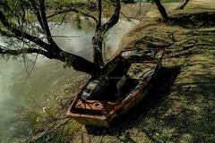 Al borde del Lago (ameliapardo) Tags: lago agua barcos arboles naturaleza fujixt2 fujinon1855 cañadadelospájaros sevilla andalucía españa