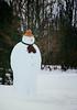 Sharp-Dressed (Snow) Man (Dan Haug) Tags: snowman greely winter ottawa whimsical dapper sharpdressed happy outside xt3 xf50140mmf28rlmoiswr xf50140mm fujifilm fujixseries fujifilmglobal january 2019