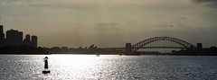 Sydney (gerikson) Tags: water sydney sydneyharborbridge sunlight