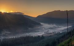 River Of Mist (jasty78) Tags: lochlubnaig strathyre stirling loch trees sunrise sunburst starburst mist gold glow scotland nikond7200 sigma350mmf14
