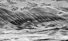 Painted Hills, Oregon (maytag97) Tags: painted national monument hills maytag97 nikon d750 oregon central usa geology day nature john dry color fossil unit background landscape outdoor park rock scenic scenery america picturesque terrain erosion formations beautiful view beauty clay beds abstract sky soil mountain bw blackandwhite contrast clarity monochrome