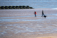 Fetch (David-Andrew-Photography) Tags: new brighton beach river mersey