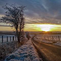 Monday morning Commute (joolst14) Tags: mondaymorning sunrise frost commute work mobile