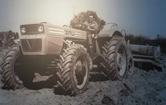"Same Buffalo V6  ""foto storica"" (samestorici) Tags: trattoredepoca oldtimertraktor tractorfarmvintage tracteurantique trattoristorici oldtractor veicolostorico"