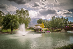 Breezy Willow Tree (Brad Prudhon) Tags: 2018 drafthorseshow essentialoilsfarm mona september utah youngliving lake pond water fountain