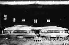 Barnfinds (HonJazzz) Tags: film dodge charger abondoned cars barn black white bw decay rust old oldschool canon f1 fd trix 400 new jersey farm timeless