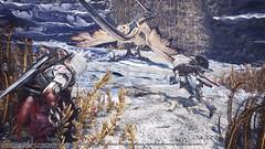 Monster-Hunter-World-x-Assassins-Creed-311218-003