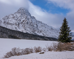 _SSS1771.jpg (S.S82) Tags: 2019 travelphoto lakebow canadianrockies landscape winter venturebeyond nature alberta mountains myjasper canada snow icefieldspkwy frozen ss82 cold landscapephotography icefieldsparkway keepexploring landscapecaptures travelworld improvementdistrictno09 ca