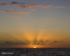 Kehena Day Break_27A8738 (Alfred J. Lockwood Photography) Tags: alfredjlockwood nature seascape sunrise kehehabeach bigisland hawaii pacificocean sea clouds sky winter morning lightbeams dawn