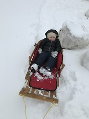 """Dani in Her Sled • <a style=""""font-size:0.8em;"""" href=""""http://www.flickr.com/photos/109120354@N07/46931991641/"""" target=""""_blank"""">View on Flickr</a>"""