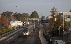 723 - Emeryville (imartin92) Tags: emeryville california amtrak passenger train capitolcorridor railroad railway emd f59phi locomotive