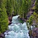 Rapids of the Stehekin River Rushing By (North Cascades National Park)