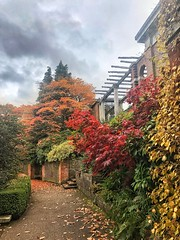 Hampstead Pergola redux (marc.barrot) Tags: landscape autumn foliage park garden uk nw3 london hampstead westheath hampsteadpergola