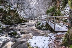 Tumbling Waters, Ness Glen (stoneleighboy) Tags: ayrshire lochdoon craigengillan winter water movement walk snow trees scotland