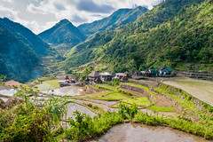 Village de Bangaan (Voyages Lambert) Tags: farmworkerlandscapedirrigationequipmentsteepgardeningifug farmworker landscaped irrigationequipment steep gardening ifugao indigenousculture growth care cultures highup finance agriculture foodanddrink surfacelevel farmer ifugaoprovince luzon philippines ricecerealplant plant mountain hill ricepaddy terracedfield landscape water cottage house builtstructure residentialdistrict village humansettlement food igorot stonewall unescoworldheritagesite layered