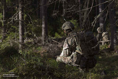 British troops train to fight in Norway's forests during Exercise Trident Juncture