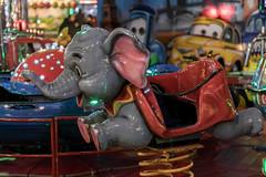 The scary fair ride experience (michael_hamburg69) Tags: hamburg deutschland de hansestadt germany dom winterdom kirmes jahrmarkt 2018 photowalkmitkatrin funfair parishfair heiligengeistfeld funride fairride fahrgeschäft elefant elephant