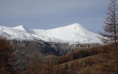 mont Mounier 2817m - 9242 ft (b.four) Tags: montagna montagne mountain neve snow neige mounier peone hautcians hautvar alpesmaritimes coth5