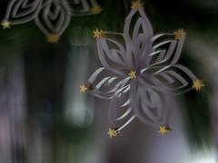 Season Art (BeMo52) Tags: advent bokeh christmasdeco macro makro papierstern pentaconauto50mmf18mc vase weihnachtsdekoration weymouthkiefe