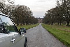 View Along The avenue (syf22) Tags: glamiscastle scotland angus forfar glamis car vechile mini bmwmini automobile auto autocar automotor motor motorcar motorised minicoopers minir56 drive long avenue lane path estate mini50