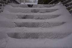 Lumises Rakveres (anuwintschalek) Tags: nikond7200 18140vr eesti estland estonia rakvere lumi schnee snow snowfall tuisk schneetreiben schneesturm schneefall trepp treppe stairs rakvereteater january 2019