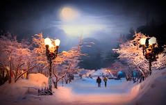 Night Walk (jarr1520) Tags: winter landscape sky clouds moon fog mist night composite textured forest trees lights people walks pathway