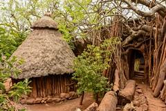 Konso Village (Rod Waddington) Tags: africa african afrika afrique ethiopia ethiopian etiopia konso tribe tribal village culture cultural house home hut timber rocks