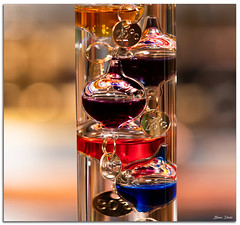 Galileo Thermometer (Bear Dale) Tags: thermometer ulladulla southcoast new south wales shoalhaven australia beardale lakeconjola fotoworx milton nsw nikond850 photography framed nikon d850 nikkor afs f56e ed vr micro 105mm f28g ifed color colors colorful balls temperature bokeh dof depthoffield galileo