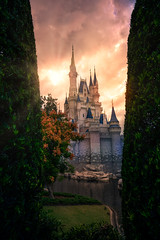 Cinderella Castle Sunset Between Two Trees (TheTimeTheSpace) Tags: waltdisneyworld disneyworld disney magickingdom cinderellacastle sunset nikonz7 nikon2470f4s