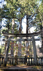 子種石 (Aerisabel) Tags: shrine 神橋 nikko 日光 japan japon temple tradition building tree architecture tochigi kanto 栃木県 forest 北野神社 wood grass rock 子種石