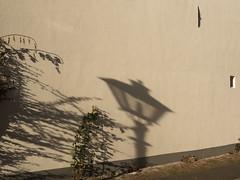 a shadow of a light (beeldmark) Tags: nederland utrecht detail schaduwen provincieutrecht thenetherlands オランダ netherlands schaduw shadow shadows panasonic gm1 beeldmark stad city