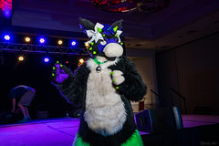 DSC08971 (Kory / Leo Nardo) Tags: pacanthro pawcon paw con pac anthro convention fur furry fursuit suiting mascot sona fursona san jose doubletree hotel california dance party deck animals costuming pupleo 2018