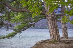 Le Bourget (jmarcdive) Tags: bourget lac lake savoie france sony a7 minolta rokkor
