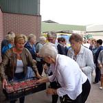 aardbeien-en frambozenkwekerij 30-08-2018