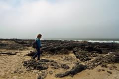 Cape Perpetua visitor