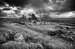 Ditsworthy Approach (Frosty__Seafire) Tags: ditswothy warren manor house dartmoor grade ii listed building sheepstor moor moorland landscape sun burst d7000 1020 sigma high contrast black white old abandoned derelict war horse location film