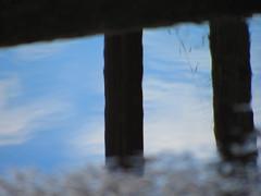 Wander I Wondering (anaritaperalta) Tags: água reflexo
