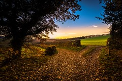 The golden way (Phil-Gregory) Tags: mosborough mossvalley nikon d7200 tokina1120mmatx tokina 1120mmproatx11 1120mmproatx path gate field sheffield plumbley scenicsnotjustlandscapes countryside countrylife country autumn sunset