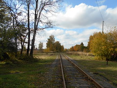 My favorite view. Afternoon. October (msergeevna) Tags: railway природа железнаядорога nikon nature autumn syksy rautatie осень