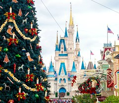 Walking in a Winter Wonderland! (andrew_carter091) Tags: disneyphotographer disneyside waltdisneyworld disneyworld disneycastle disneycolors waltdisney disneyparks disney disneyresort waltdisneyworldresort disneyvacationclub disneyphotography disneyaddict magickingdom mainstreetusa cinderellacastle christmastree decorations christmas holidays merrychristmas clouds festive joy peace camera professionalphotographer travelphotographer photo travelphotography photography photographer nikonphotographer nikonphotography nikond3300 nikon