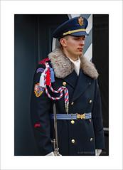 Palace Guard (prendergasttony) Tags: soldier nikon palace guard tonyprendergast d7200 prague castle uniform gun czech praha red blue white fur buttons cap epaulettes