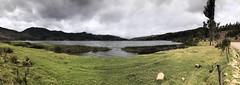 Vista Panorámica de la Laguna de Pacucha (Luis Fer Barriales) Tags: lagunadepacucha laguna lagoon lagon lagoa paisaje landscape paysage paisagem naturaleza nature natureza panoramica panorama panoramique pacucha andahuaylas apurimac peru