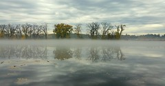 November Reflections (Liddy5) Tags: fog mist water reflections clouds storm autumn canal eriecanal