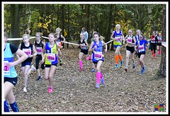 Chloe Phillips (1) (nowboy8) Tags: nikon nikond500 xc nationalxcrelays mansfield berryhillpark notts crosscountry relays relay woods cleethorpesac cleeac team