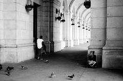 000473190009.jpg (Jorge Carrera) Tags: union station