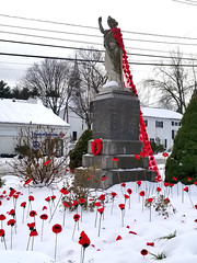 20181116_132104 (Pak T) Tags: carlisle massachusetts snow statue worldwarone wwi remembrance carlislepoppyproject rotary ladylibertystatue