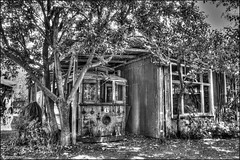 Number 6 to Nowhere (kmacnz) Tags: hdr tram derelict bw blackandwhite yaldhurst