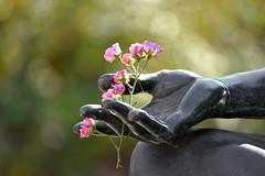 A Gift of Dark Fantasy (Robin Shepperson) Tags: summer flowers statue art park berlin germany pink green black gift d3400 nikon hand fantasy bokeh